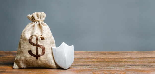 ドル記号と保護シールド付きバッグします。