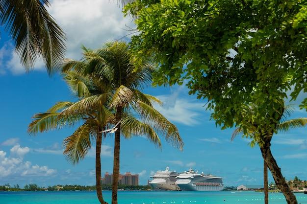 Багамы. два круизных лайнера и красивый отель в кристально голубой воде с пальмой на фасаде.