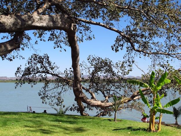 Bahr dar, lake tana, in ethiopia, africa