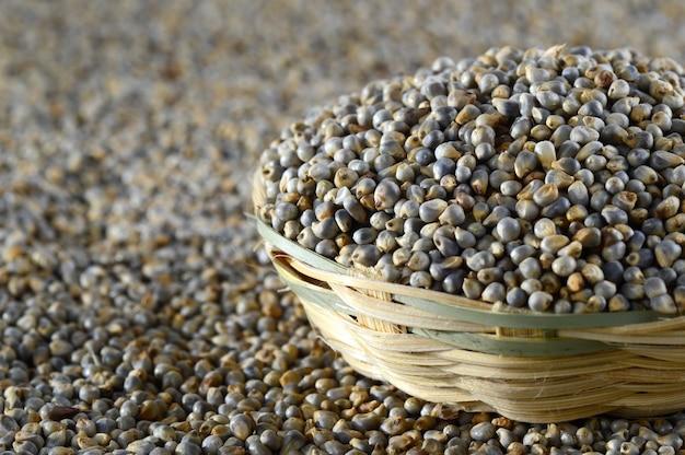 Bajra (pearl millet) in wooden (bamboo) basket