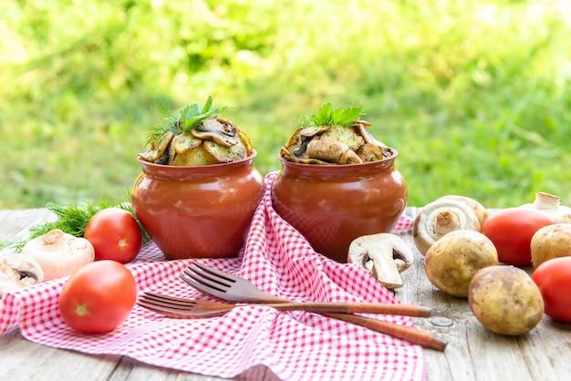 Запеченный картофель с курицей и грибами с добавлением разных приправ. в глиняных горшочках. в природе