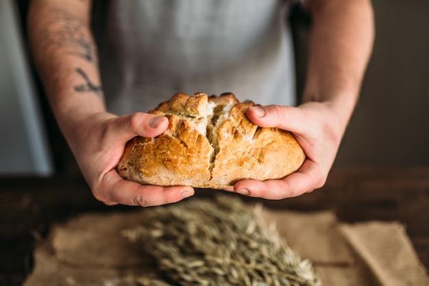 ベーカーの手は、黄麻布の上に小麦の束を載せたテーブルの上にカリカリの皮が付いた焼きたての焼きたてのパンの半分で壊れます。自家製ベーカリーコンセプト、自然の有機食品。