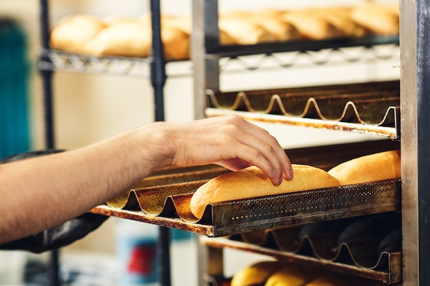 ベイカーはホットドッグのパンをパレットに置きます。