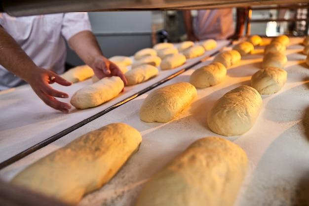 パン職人の手がパンを焼くための生地を形成し、製造時にオーブントレイに入れます