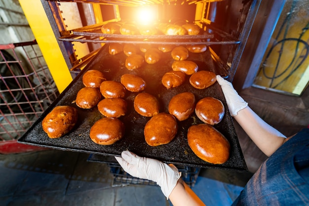 Bakery production. factory oven background. buns and fresh pies on tray.