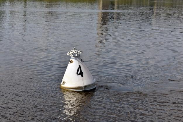강에서 수영하는 바킨