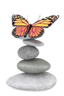 白い背景の上の蝶とバランスの取れた石
