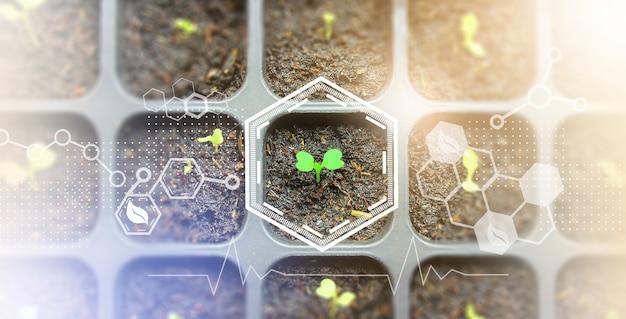 Сбалансированное использование биомассы, использование биомассы и химии для сохранения природы, концепция сохранения природы