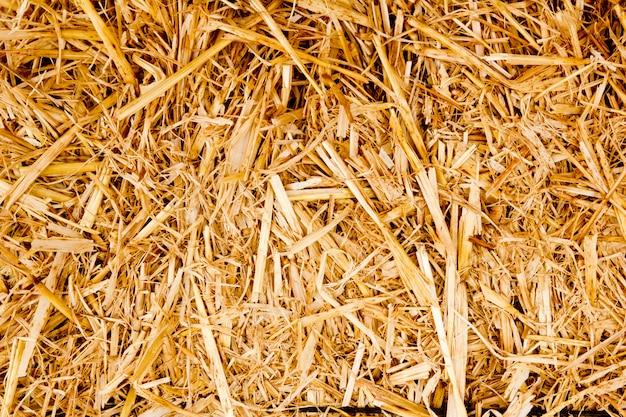 Bale golden straw texture ruminants animal food