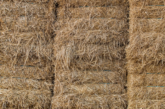 Bale haystack