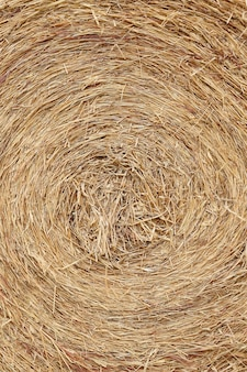 Bale of straw texture background