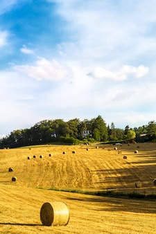 Bales of hay in tuscany