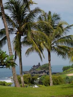 Bali shoreline