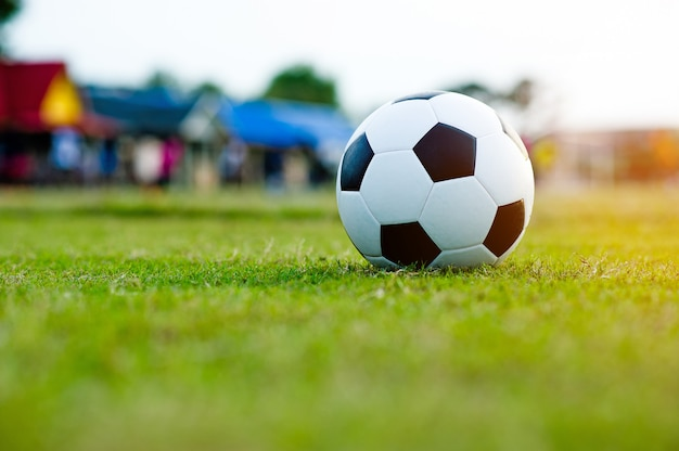 The ball on the grass in the green field on the football field ready for the penalty. and