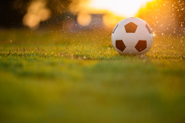A ball on the green grass field for soccer football game under the sunset ray light