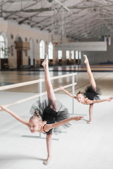 Ballerina girl stretching at barre with her friend