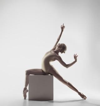 Балерина. молодая изящная танцовщица танцовщицы балета. красота классического балета.