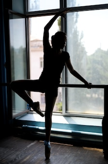 Ballet dancer exercising at the barre by window