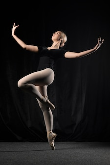 トウシューズでポーズをとるバレエダンサー