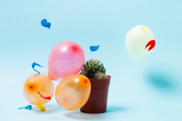 Balloons and cactus on blue background