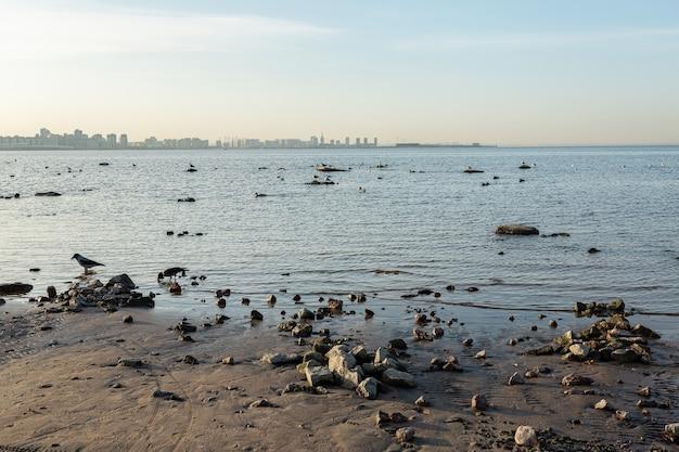 ロシアのサンクトペテルブルクを望むバルト海。