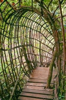 깊은 숲 속 강을 가로지르는 대나무 아치형 정글의 놀라운 대나무 다리