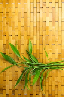 Bamboo branches and leaves on wooden carpet top view copy space