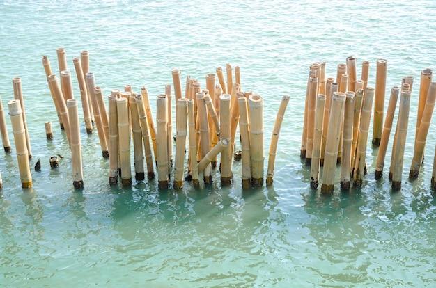 Bamboo breakwater. bamboo pole using for break sea wave