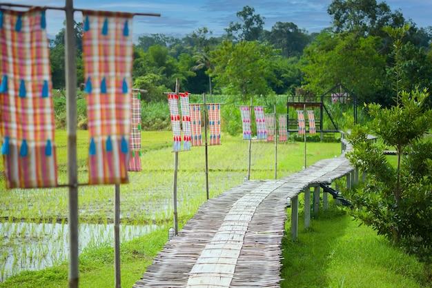 Бамбуковый мост через рисовое поле в homestay in the forest house в чианг дао, таиланд