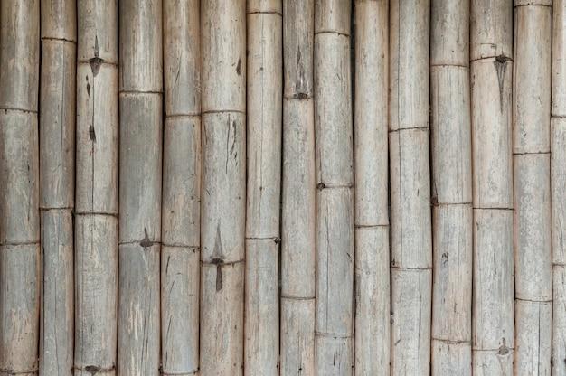 대나무 울타리 배경, 오래된 대나무