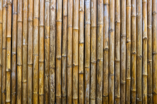 Bamboo fence background for wallpaper . old yellow wooden textured pattern.