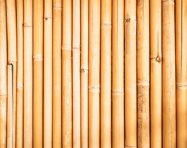 Bamboo fence texture background