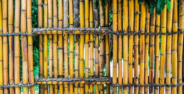 A bamboo fence