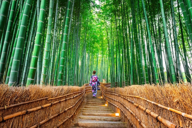 Bamboo forest. asian woman wearing japanese traditional kimono at bamboo forest in kyoto, japan.