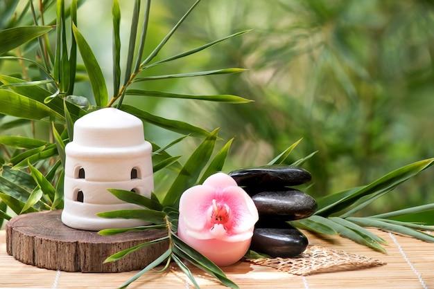 Бамбуковые зеленые листья, концепция спа с дзен и черными камнями.