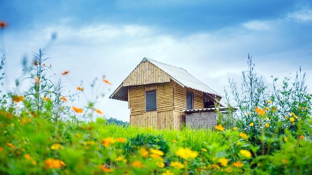 曇りの日、チェンマイ、タイの棚田の緑の水田に竹の家