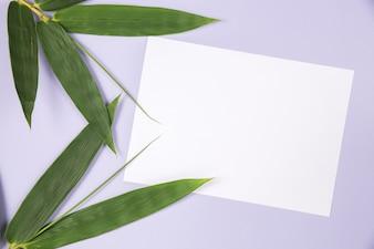 Бамбуковый лист с пустой белой карточкой