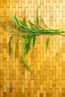 笹の葉と笹の枝を平らに置いたコピースペース
