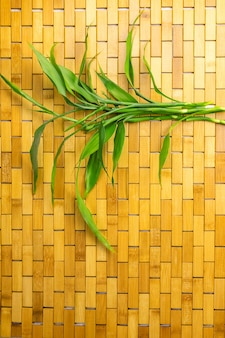 Bamboo leaves and branches on bamboo mat flat lay copy space