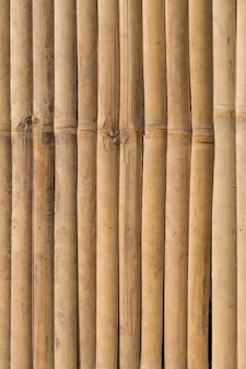 Bamboo panel texture background