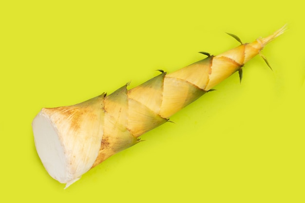 Bamboo shoot on green background.