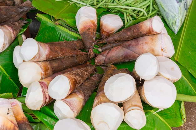 Bamboo shoots or bamboo sprouts high in uric acid danger from.