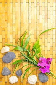 Bamboo shoots, stones and flower on wooden carpet top view copy space