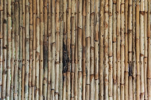 Bamboo texture with natural patterns. vertical trunks of bamboo wood, varnished on the background. wooden bamboo wall