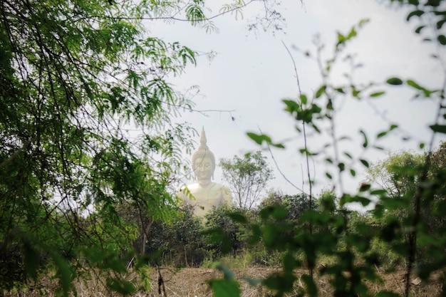 仏の背景の竹の木。