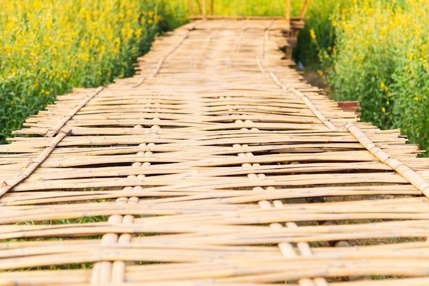 화창한 날에 노란 꽃 (마 대마) 필드와 대나무 직조 도보 방법 다리