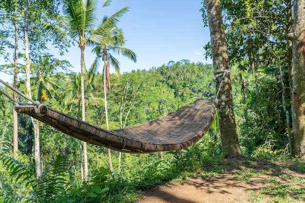Bamboo wicker hammock next to the tropical jungle in island bali, indonesia, close up