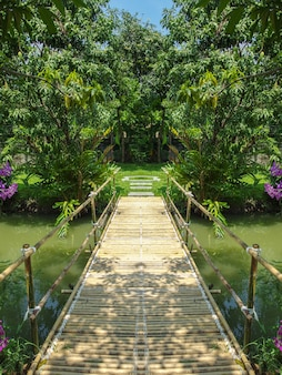 Bamboo wood bridge surrounded by natural green forest .