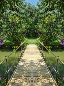 Бамбуковый деревянный мост, окруженный естественным зеленым лесом.
