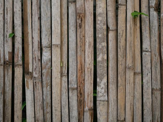 Bamboo wood wall background